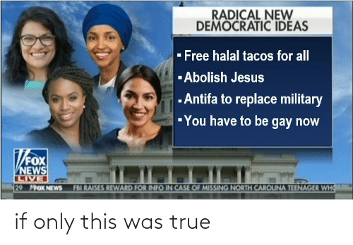 Teenager: RADICAL NEW  DEMOCRATIC IDEAS  - Free halal tacos for all  -Abolish Jesus  - Antifa to replace military  -You have to be gay now  FOX  NEWS  LIVE  29 MFOX NEWS  FBI RAISES REWARD FOR INFO IN CASE OF MISSING NORTH CAROUNA TEENAGER WHO if only this was true