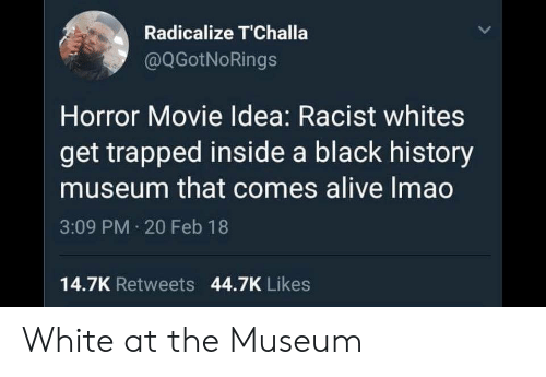 horror movie: Radicalize T'Challa  @QGotNoRings  Horror Movie Idea: Racist whites  get trapped inside a black history  museum that comes alive Imao  3:09 PM 20 Feb 18  14.7K Retweets 44.7K Likes White at the Museum