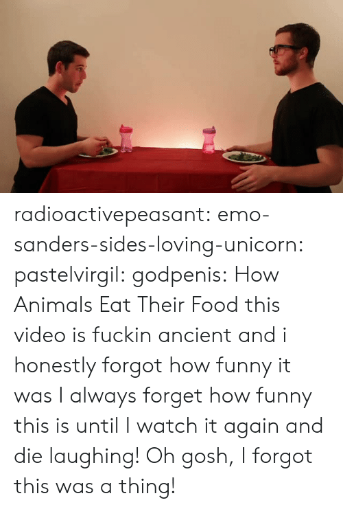 Emo: radioactivepeasant: emo-sanders-sides-loving-unicorn:  pastelvirgil:  godpenis:  How Animals Eat Their Food   this video is fuckin ancient and i honestly forgot how funny it was  I always forget how funny this is until I watch it again and die laughing!   Oh gosh, I forgot this was a thing!