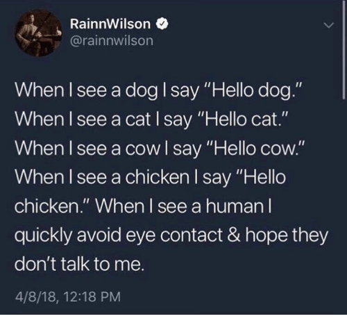 """Hello, Chicken, and Hope: RainnWilson  @rainnwilson  When I see a dog I say """"Hello dog.""""  When I see a cat I say """"Hello cat.""""  When I see a cow l say """"Hello cow.""""  When I see a chicken I say """"Hello  chicken."""" When l see a human I  quickly avoid eye contact & hope they  don't talk to me.  4/8/18, 12:18 PM  ello coOW"""