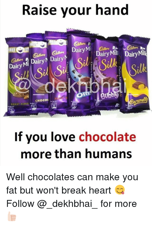 Roastes: Raise your hand  FR  FREE  Dairyna Dairy, Dairy  Dairy Mi Dairy Dairy  Sil S  Silk  Silk  CHOCO  ROAST ALMO  If you love chocolate  more than humans Well chocolates can make you fat but won't break heart 😋 Follow @_dekhbhai_ for more 👍🏻