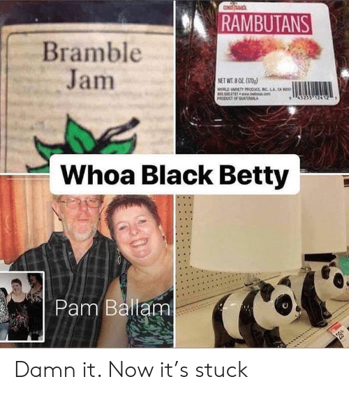 Memes, Black, and 🤖: RAMBUTANS  Bramble  Jam  ET WT802 (170  Whoa Black Betty  Pam Ballam Damn it. Now it's stuck