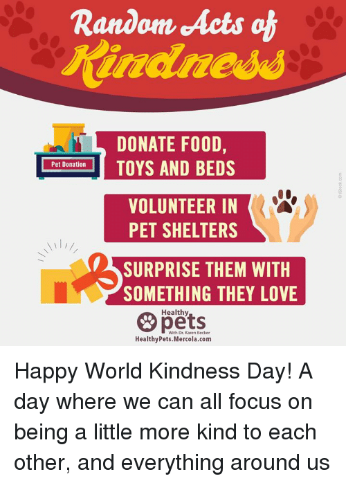 Love, Memes, and Focus: Random Acts ch  DONATE FO0D,  Pet Donation  VOLUNTEER IN  PET SHELTERS  SURPRISE THEM WITH  SOMETHING THEY LOVE  Healthy  With Dr. Karen Becker Happy World Kindness Day! A day where we can all focus on being a little more kind to each other, and everything around us