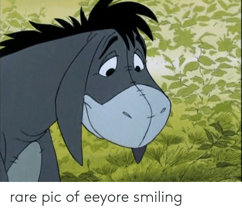 Rare, Eeyore, and Pic: rare pic of eeyore smiling