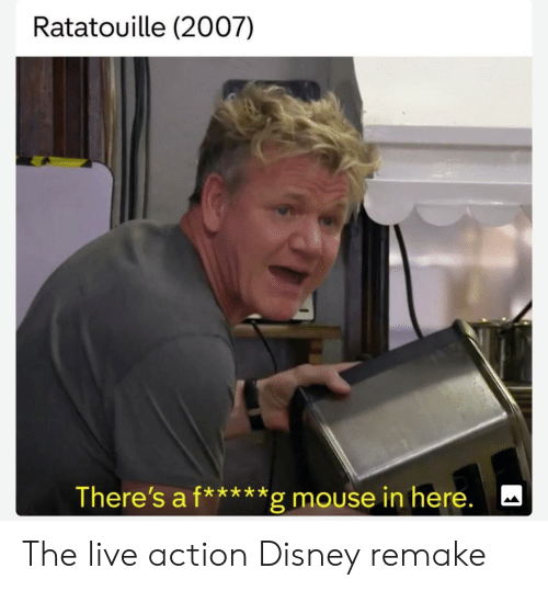 Disney, Ratatouille, and Live: Ratatouille (2007)  There's a f*****g mouse in here. The live action Disney remake