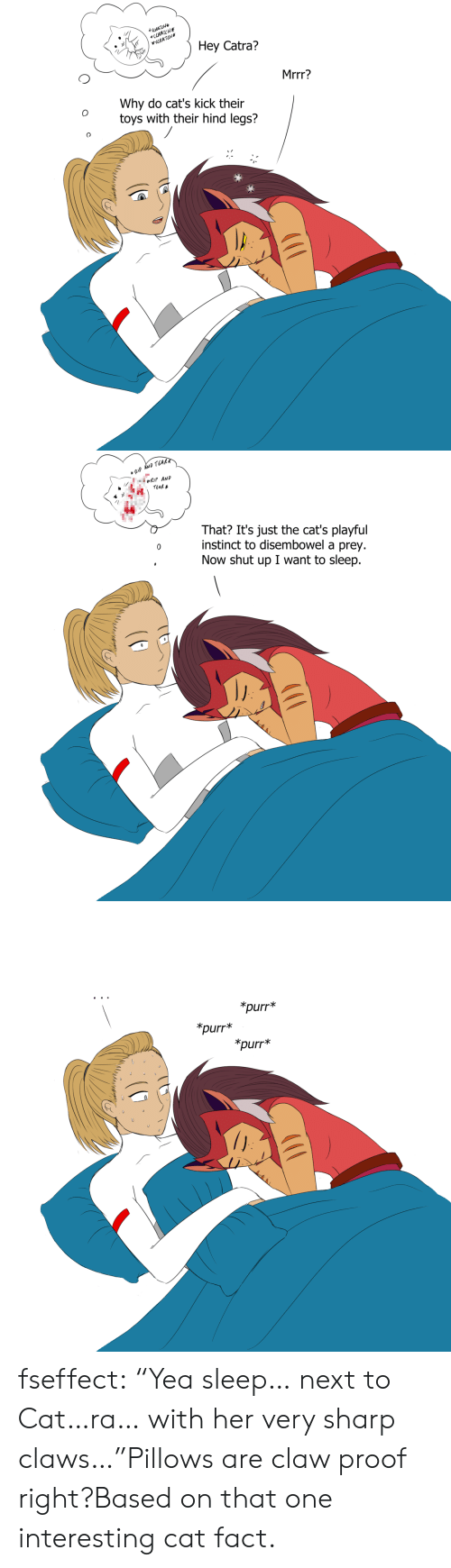 """hind: RATCH  <CCUATCH  *SRATUH  Hey Catra?  Mrrr?  Why do cat's kick their  toys with their hind legs?   Ip AND TEAR  RIP AND  TEAR  That? It's just the cat's playful  instinct to disembowel a prey.  Now shut up I want to sleep  O   *purr*  *purr  *purr* fseffect:  """"Yea sleep… next to Cat…ra… with her very sharp claws…""""Pillows are claw proof right?Based on that one interesting cat fact."""