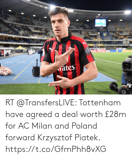 tottenham: rates RT @TransfersLlVE: Tottenham have agreed a deal worth £28m for AC Milan and Poland forward Krzysztof Piatek. https://t.co/GfmPhh8vXG