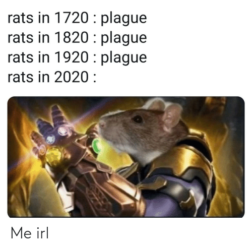 rats: rats in 1720 : plague  rats in 1820 : plague  rats in 1920 : plague  rats in 2020 : Me irl
