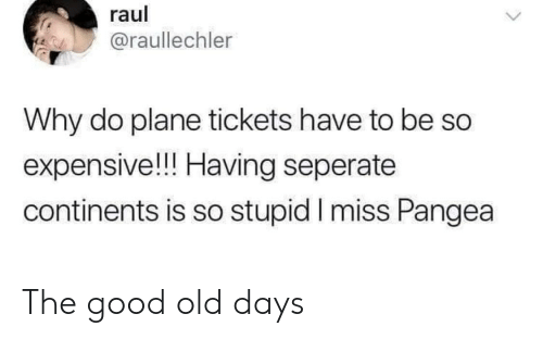 Good, Plane Tickets, and Old: raul  @raullechler  Why do plane tickets have to be  expensive!!! Having seperate  continents is so stupid I miss Pangea The good old days
