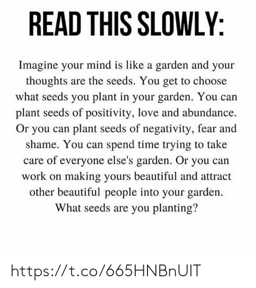 positivity: READ THIS SLOWLY  Imagine your mind is like a garden and your  thoughts are the seeds. You get to choose  what seeds you plant in your garden. You can  plant seeds of positivity, love and abundance  Or you can plant seeds of negativity, fear and  shame. You can spend time trying to take  care of everyone else's garden. Or you can  work on making yours beautiful and attract  other beautiful people into your garden.  What seeds are you planting? https://t.co/665HNBnUIT