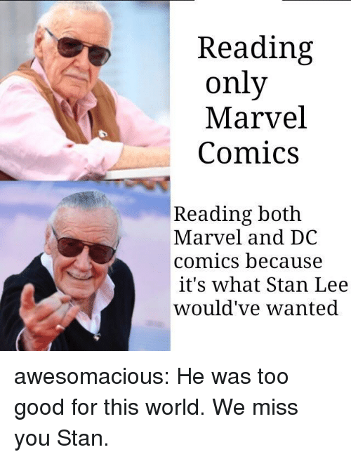 Marvel Comics, Stan, and Stan Lee: Reading  only  Marvel  Comics  Reading both  Marvel and DC  comics because  it's what Stan Lee  would've wanted awesomacious:  He was too good for this world. We miss you Stan.