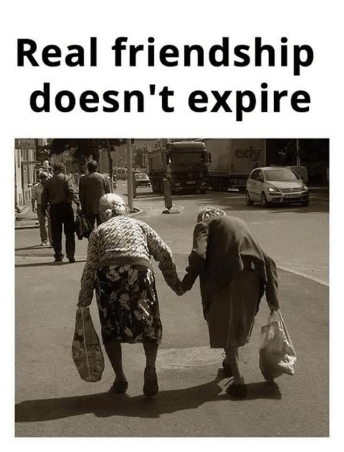 Memes, Friendship, and 🤖: Real friendship  doesn't expire