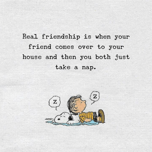House, Friendship, and Friend: Real friendship is when your  friend comes over to your  house and then you both just  take a nap  Z  Z