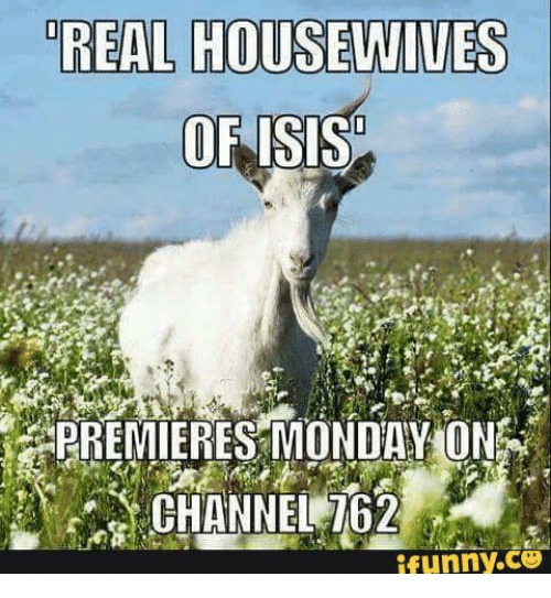 Funny, Isis, and Isi: REAL HOUSEWIVES   OF ISIS   PREMIERES MONDAVION   funny
