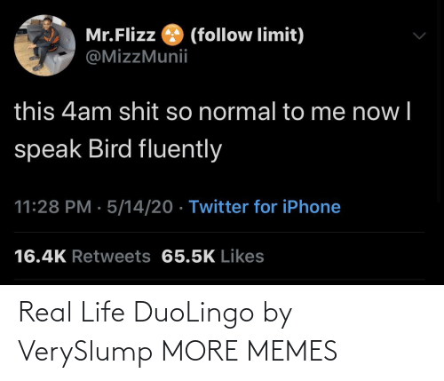 real life: Real Life DuoLingo by VerySlump MORE MEMES