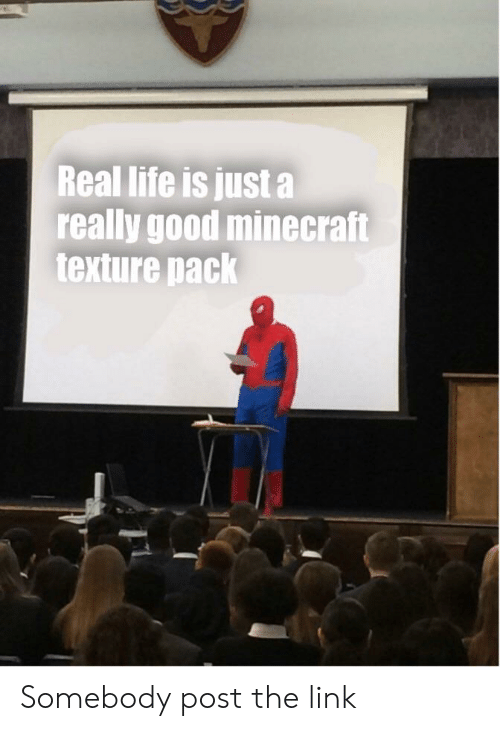 Life, Minecraft, and Reddit: Real life is just a  really good minecraft  texture pack Somebody post the link