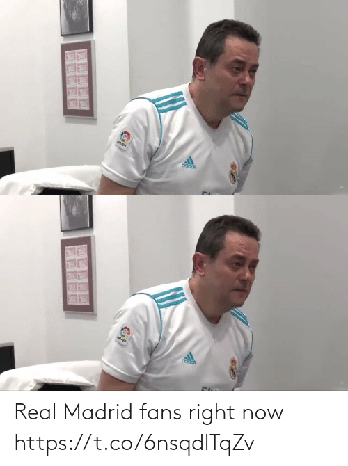 right now: Real Madrid fans right now  https://t.co/6nsqdlTqZv