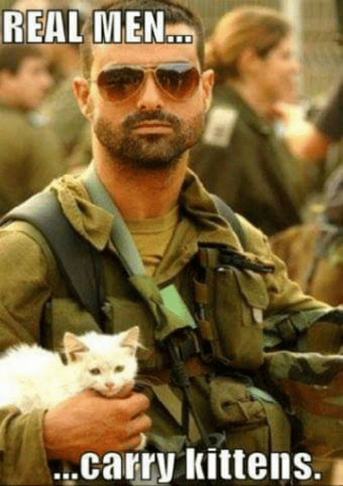 Kittens: REAL MEN...  carry kittens.