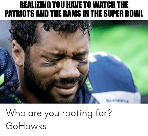 Seattle Seahawks: REALIZING YOU HAVE TO WATCH THE  PATRIOTS AND THE RAMS IN THE SUPER BOWL Who are you rooting for? GoHawks