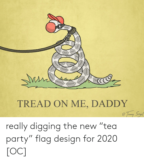 "The New: really digging the new ""tea party"" flag design for 2020 [OC]"