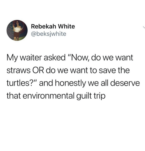 """Memes, White, and 🤖: Rebekah White  @beksjwhite  My waiter asked """"Now, do we want  straws OR do we want to save the  turtles?"""" and honestly we all deserve  that environmental guilt trip"""