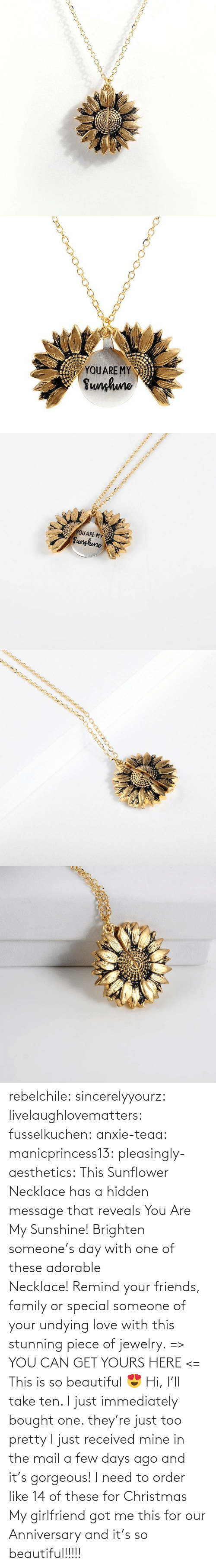 Gt: rebelchile:  sincerelyyourz:  livelaughlovematters:  fusselkuchen:  anxie-teaa:   manicprincess13:   pleasingly-aesthetics:  This Sunflower Necklace has a hidden message that reveals You Are My Sunshine! Brighten someone's day with one of these adorable Necklace! Remind your friends, family or special someone of your undying love with this stunning piece of jewelry. => YOU CAN GET YOURS HERE <=   This is so beautiful 😍    Hi, I'll take ten.    I just immediately bought one. they're just too pretty   I just received mine in the mail a few days ago and it's gorgeous!   I need to order like 14 of these for Christmas    My girlfriend got me this for our Anniversary and it's so beautiful!!!!!