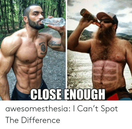 Tumblr, Blog, and Com: Recenis  CLOSE ENOUGH awesomesthesia:  I Can't Spot The Difference