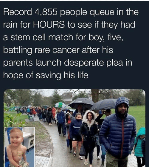Desperate, Life, and Parents: Record 4,855 people queue in the  rain for HOURS to see if they had  a stem cell match for boy, five,  battling rare cancer after his  parents launch desperate plea in  hope of saving his life