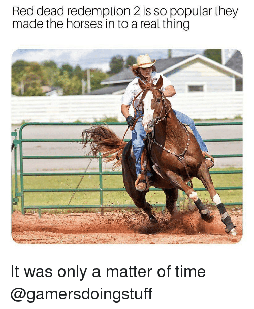 Horses, Memes, and Time: Red dead redemption 2 is so popular they  made the horses in to a real thing It was only a matter of time @gamersdoingstuff