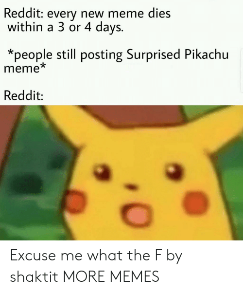 Dank, Meme, and Memes: Reddit: every new meme dies  within a 3 or 4 days.  *people still posting Surprised Pikachu  meme  Reddit: Excuse me what the F by shaktit MORE MEMES