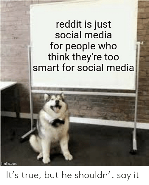 smart: reddit is just  social media  for people who  think they're too  smart for social media  imgflip.com It's true, but he shouldn't say it