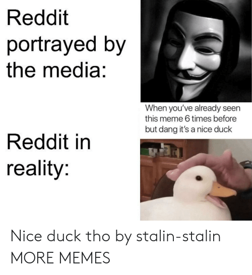 Dank, Meme, and Memes: Reddit  portrayed by  the media:  When you've already seen  this meme 6 times before  but dang it's a nice duck  Reddit in  reality: Nice duck tho by stalin-stalin MORE MEMES