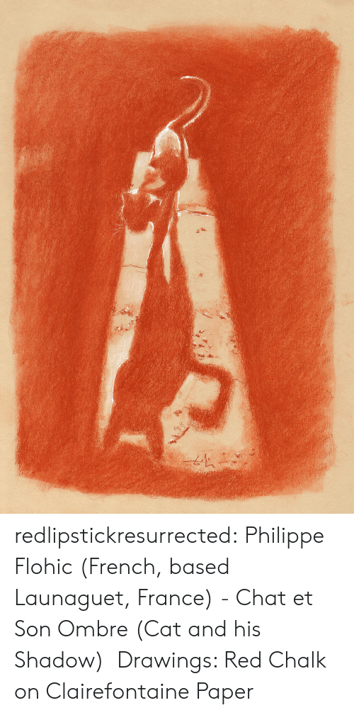 Tumblr, Blog, and Chat: redlipstickresurrected:  Philippe Flohic (French, based Launaguet, France) - Chat et Son Ombre (Cat and his Shadow) Drawings: Red Chalk on Clairefontaine Paper