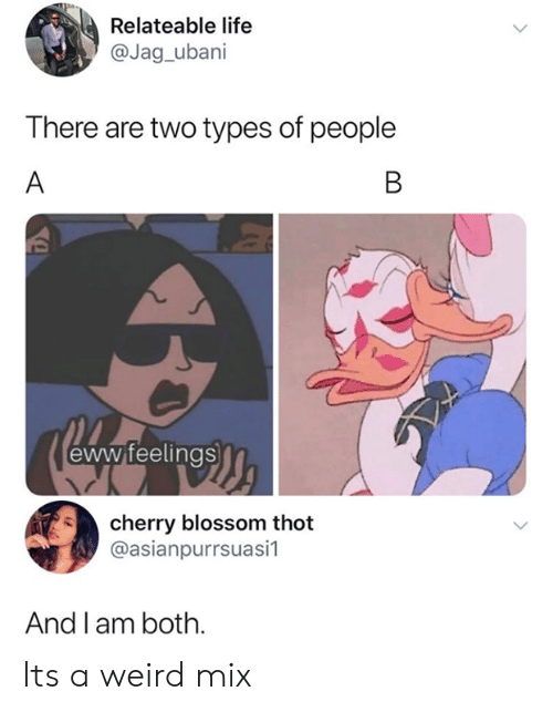 thot: Relateable life  @Jag_ubani  There are two types of people  A  B  eww feelings  cherry blossom thot  @asianpurrsuasi1  And l am both. Its a weird mix