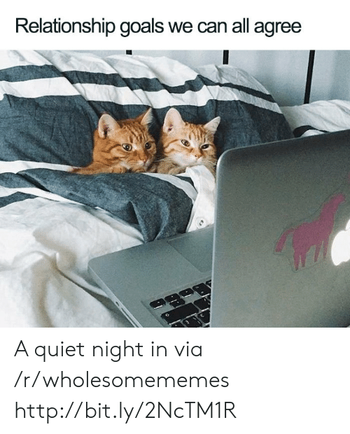 Goals, Relationship Goals, and Http: Relationship goals we can all agree A quiet night in via /r/wholesomememes http://bit.ly/2NcTM1R