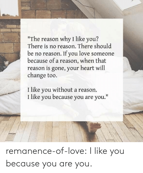 are you: remanence-of-love:  I like you because you are you.