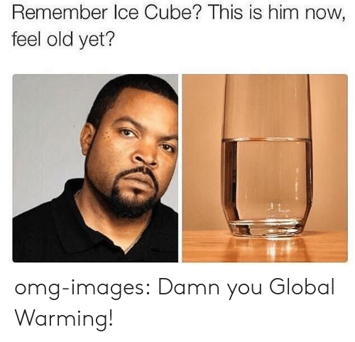 Globalism: Remember Ice Cube? This is him now,  feel old yet? omg-images:  Damn you Global Warming!
