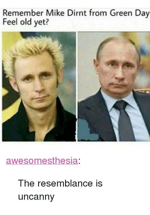 "Tumblr, Blog, and Http: Remember Mike Dirnt from Green Day  Feel old yet? <p><a href=""http://awesomesthesia.tumblr.com/post/173123871507/the-resemblance-is-uncanny"" class=""tumblr_blog"">awesomesthesia</a>:</p>  <blockquote><p>The resemblance is uncanny</p></blockquote>"