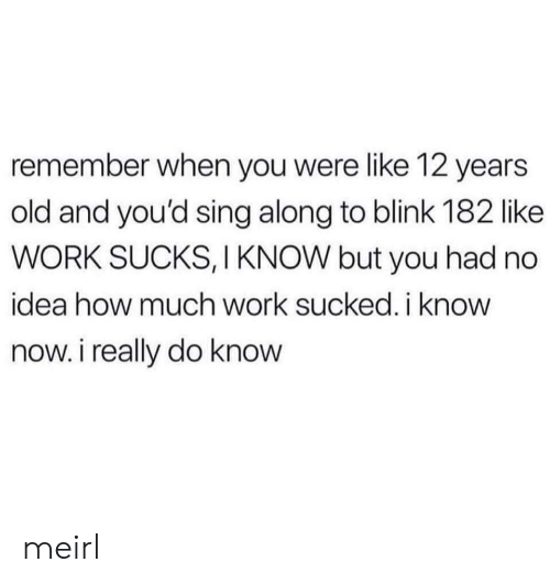 Work, Blink 182, and Old: remember when you were like 12 years  old and you'd sing along to blink 182 like  WORK SUCKS, I KNOW but you had no  idea how much work sucked. ikno  now. i really do know meirl