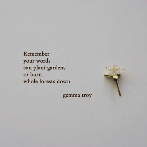 troy: Remember  your words  can plant gardens  or burn  whole forests down  gemma troy