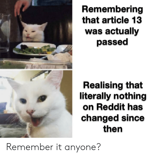 Reddit, Article, and Remember: Remembering  that article 13  was actually  passed  Realising that  literally nothing  on Reddit has  changed since  then Remember it anyone?
