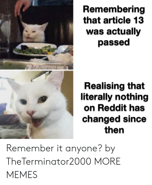Dank, Memes, and Reddit: Remembering  that article 13  was actually  passed  Realising that  literally nothing  on Reddit has  changed since  then Remember it anyone? by TheTerminator2000 MORE MEMES