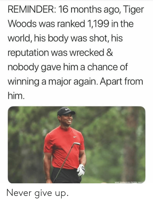 Wrecked: REMINDER: 16 months ago, Tiger  Woods was ranked 1,199 in the  world, his body was shot, his  reputation was wrecked &  nobody gave him a chance of  winning a major again. Apart from  him. Never give up.