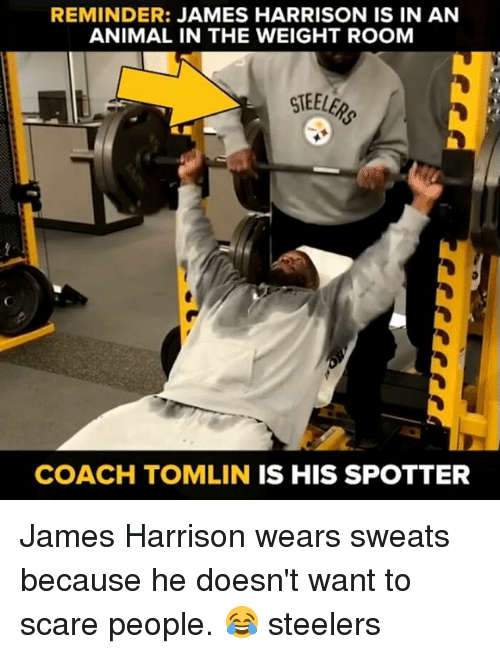 Memes, Scare, and Steelers: REMINDER:  JAMES HARRISON IS IN AN  ANIMAL IN THE WEIGHT ROOM  COACH TOMLIN IS HIS SPOTTER James Harrison wears sweats because he doesn't want to scare people. 😂 steelers