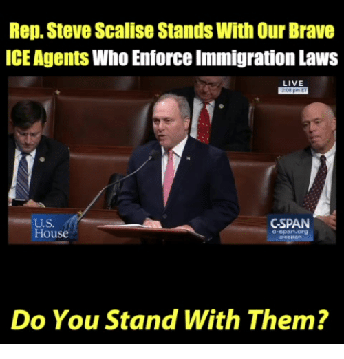 Memes, Brave, and House: Rep. Steve Scalise Stands With Our Brave  ICE Agents Who Enforce Immigration Laws  LIVE  U.S.  House  SPAN  -span org  Do You Stand With Them?