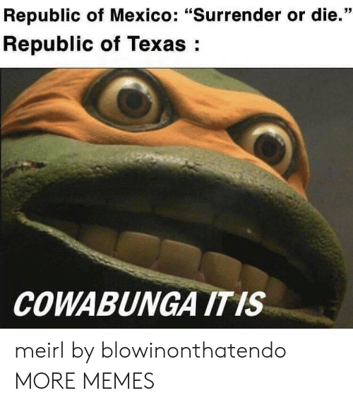"""Dank, Memes, and Target: Republic of Mexico: """"Surrender or die.""""  Republic of Texas:  COWABUNGA ITIS meirl by blowinonthatendo MORE MEMES"""