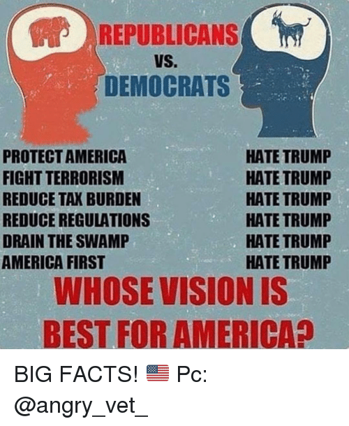 America, Facts, and Memes: REPUBLICANS  VS.  DEMOCRATS  PROTECTAMERICA  FIGHT TERRORISM  REDUCE TAK BURDEN  REDUCE REGULATIONS  DRAIN THE SWAMP  AMERICA FIRST  HATE TRUMP  HATE TRUMP  HATE TRUMP  HATE TRUMP  HATE TRUMP  HATE TRUMP  WHOSE VISION IS  BEST FOR AMERICA? BIG FACTS! 🇺🇸 Pc: @angry_vet_