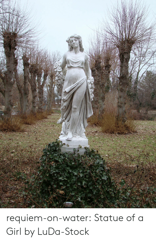 Tumblr, Blog, and Deviantart: requiem-on-water:  Statue of a Girl by LuDa-Stock