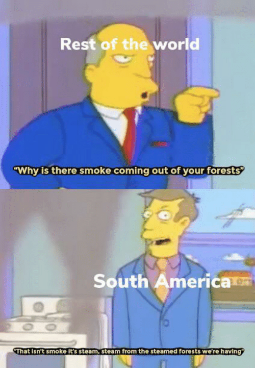 "Coming Out: Rest of the world  ""Why is there smoke coming out of your forests  South America  OO  That Isn't smoke it's steam, steam from the steamed forests we're having"