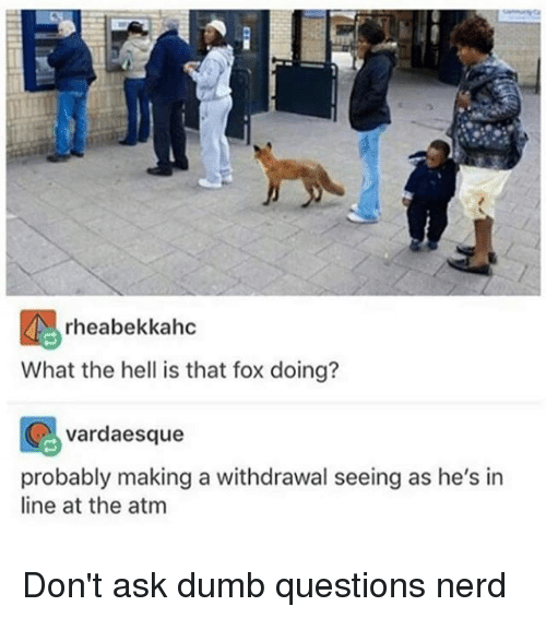 ♂: rheabekkahc  What the hell is that fox doing?  vardaesque  probably making a withdrawal seeing as he's in  line at the atm Don't ask dumb questions nerd